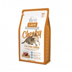 Brit Care Cat - Cheeky I'm...